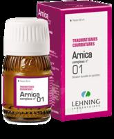 Lehning Arnica Complexe N° 1 Solution Buvable En Gouttes Fl/30ml à Pau