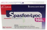 SPASFON LYOC 160 mg, lyophilisat oral à Pau