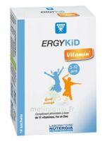 Ergykid Vitamin' Poudre solution buvable 14 Sachets à Pau