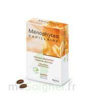 MENOPHYTEA CAPILLAIRE, bt 30 à Pau