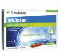 Arkocean Magnesium Marin Solution buvable caramel 20 Ampoules/10ml à Pau