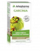 Arkogélules Garcinia Gélules Fl/45 à Pau