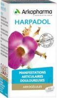 ARKOGELULES HARPAGOPHYTON, 150 gélules à Pau