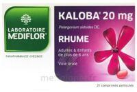 KALOBA 20 mg Cpr pell Plq/21 à Pau