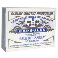 Huile de Haarlem B/30 à Pau