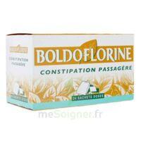 BOLDOFLORINE, mélange de plantes pour tisane en sachet-dose B/24 à Pau