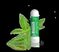 PURESSENTIEL RESPIRATOIRE Inhalation nasal 19 huiles essentielles à Pau