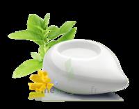 PURESSENTIEL DIFFUSION Diffuseur à chaleur douce céramique blanc à Pau