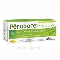PERUBORE Caps inhalation par vapeur inhalation Plq/15 à Pau