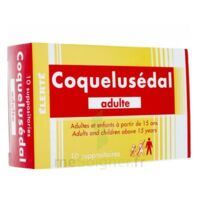 COQUELUSEDAL ADULTES, suppositoire à Pau