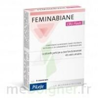 Feminabiane CBU Flash Comprimés à Pau