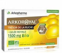 Arkoroyal Gelée royale bio 1500 mg Solution buvable 20 Ampoules/10ml à Pau