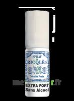 Ricqles Spray Buccal Sans Alcool Menthe 15ml à Pau
