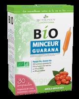 3 Chênes Bio Solution buvable brûle graisses 30 Ampoules/10ml à Pau