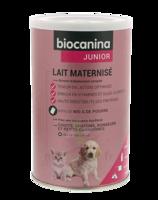 Biocanina Lait poudre maternisé B/400g à Pau