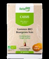 Herbalgem Gomme cassis bio B/24 à Pau