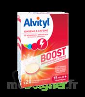 Alvityl Boost Comprimés B/20 à Pau