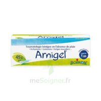 Boiron Arnigel Gel T(alumino-plastique)/45g à Pau