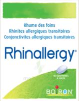 Boiron Rhinallergy Comprimés B/40 à Pau